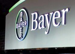 Historias de éxito emprendedor: Bayer